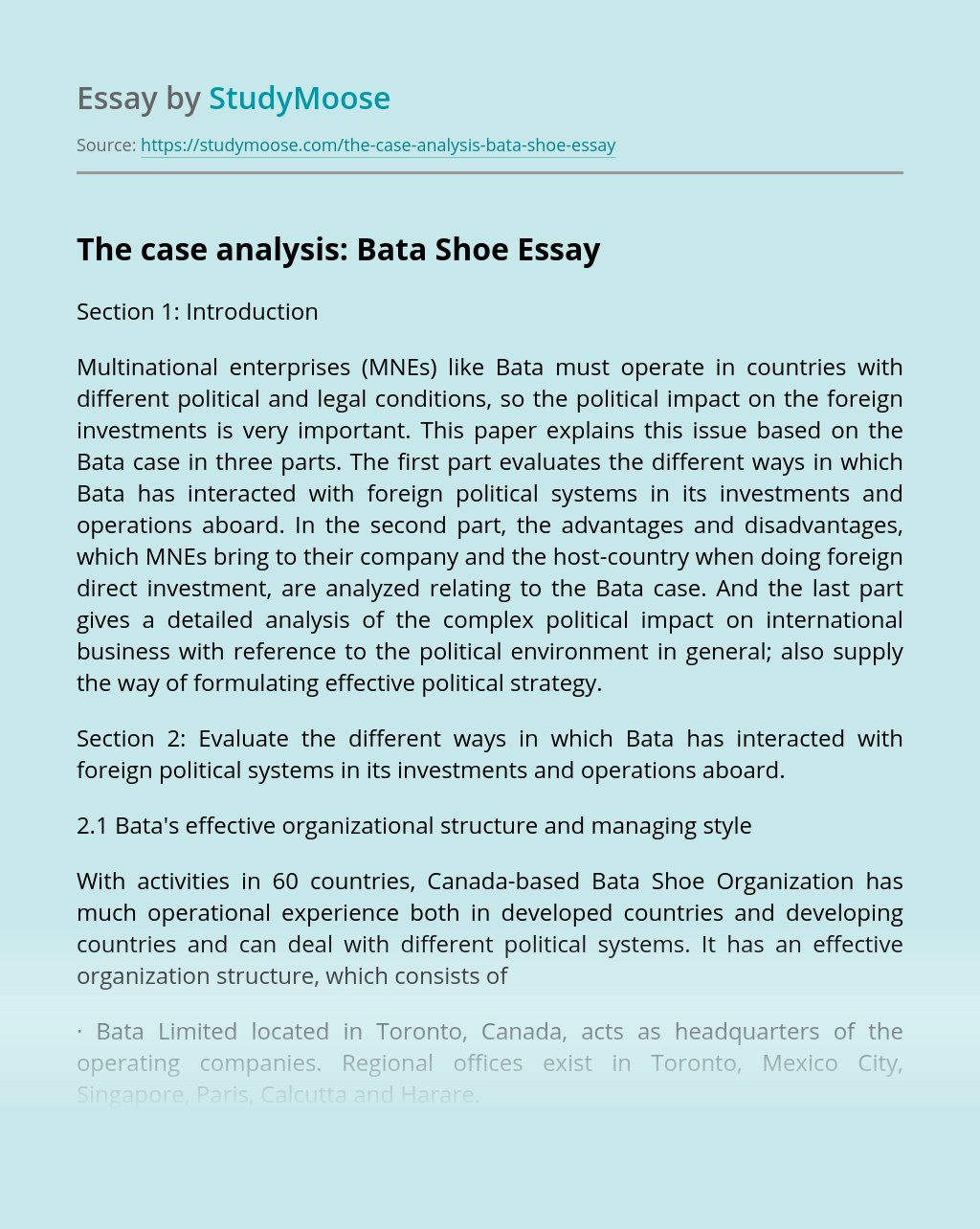 The case analysis: Bata Shoe