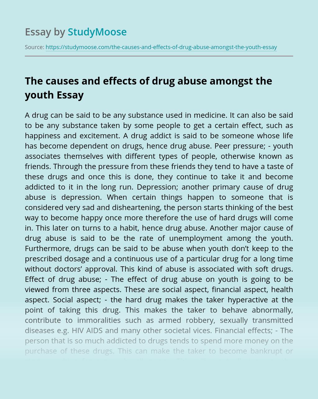 Drug Abuse Essay