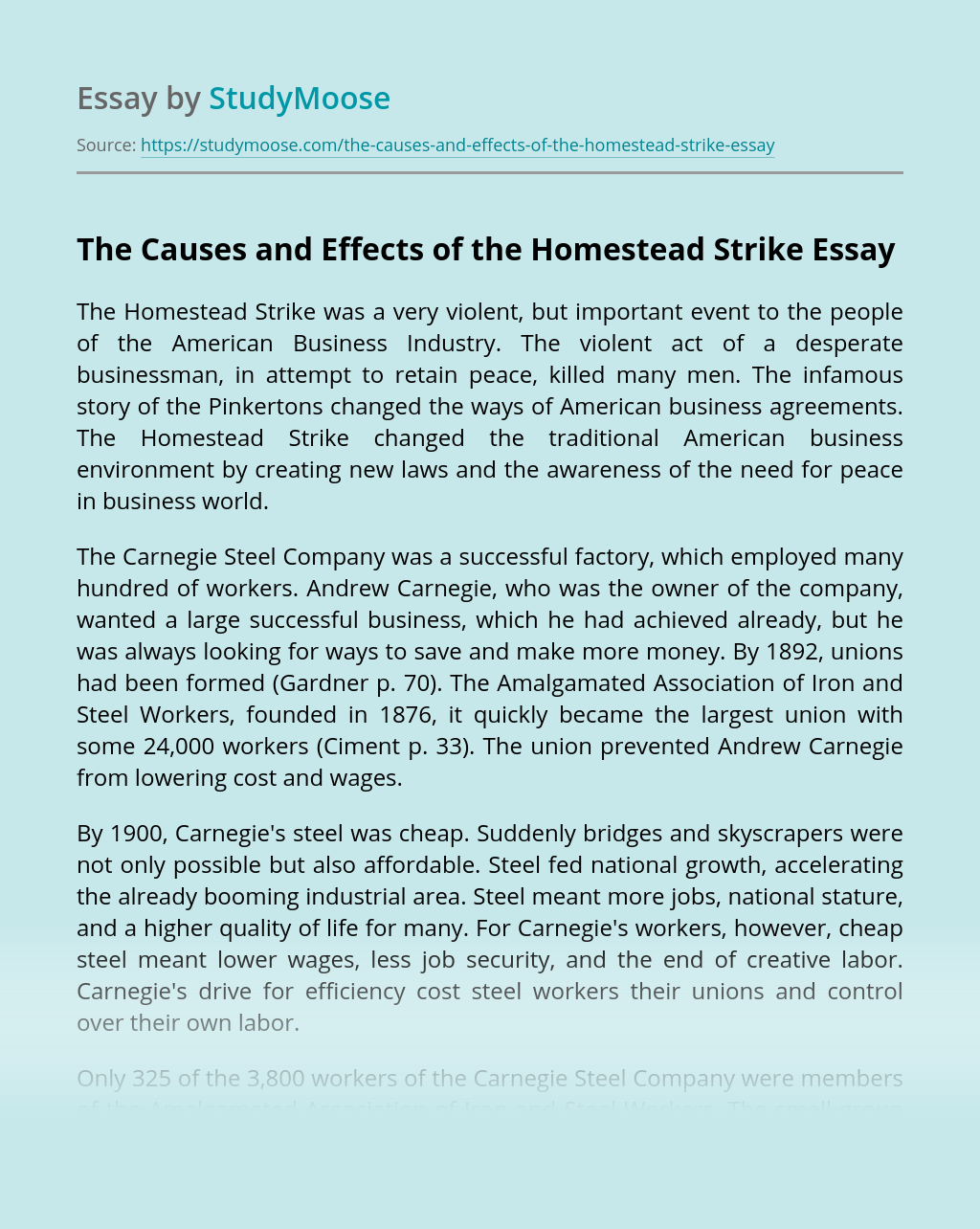 The Causes and Effects of the Homestead Strike