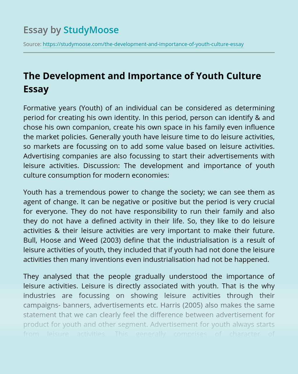 The Development and Importance of Youth Culture