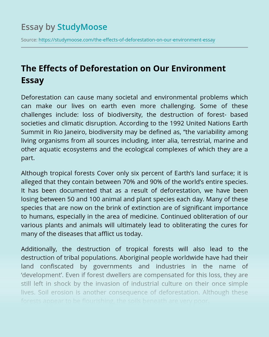The Effects of Deforestation on Our Environment