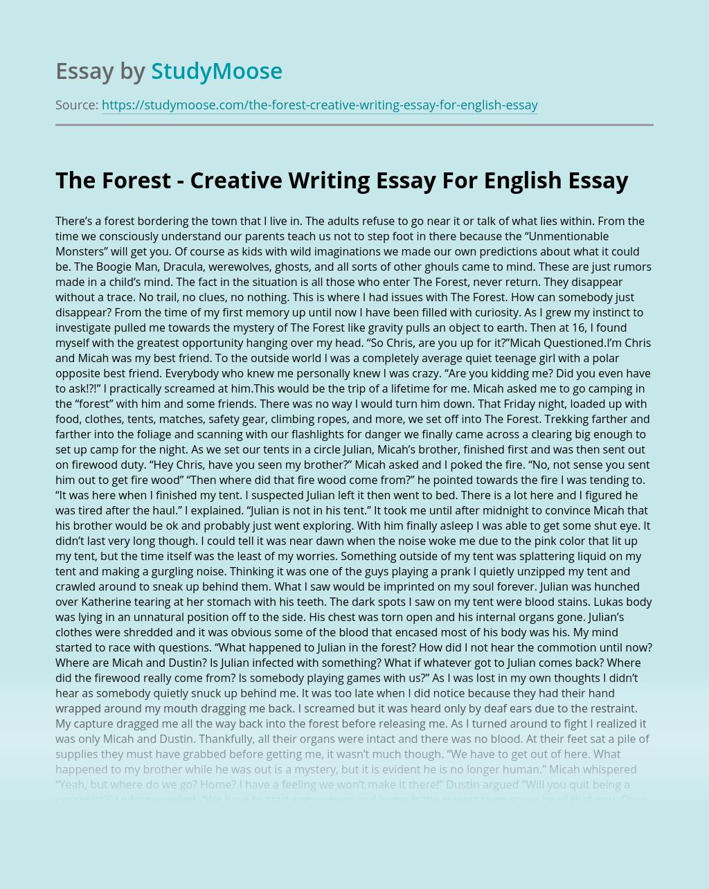 Rumble fish essay questions