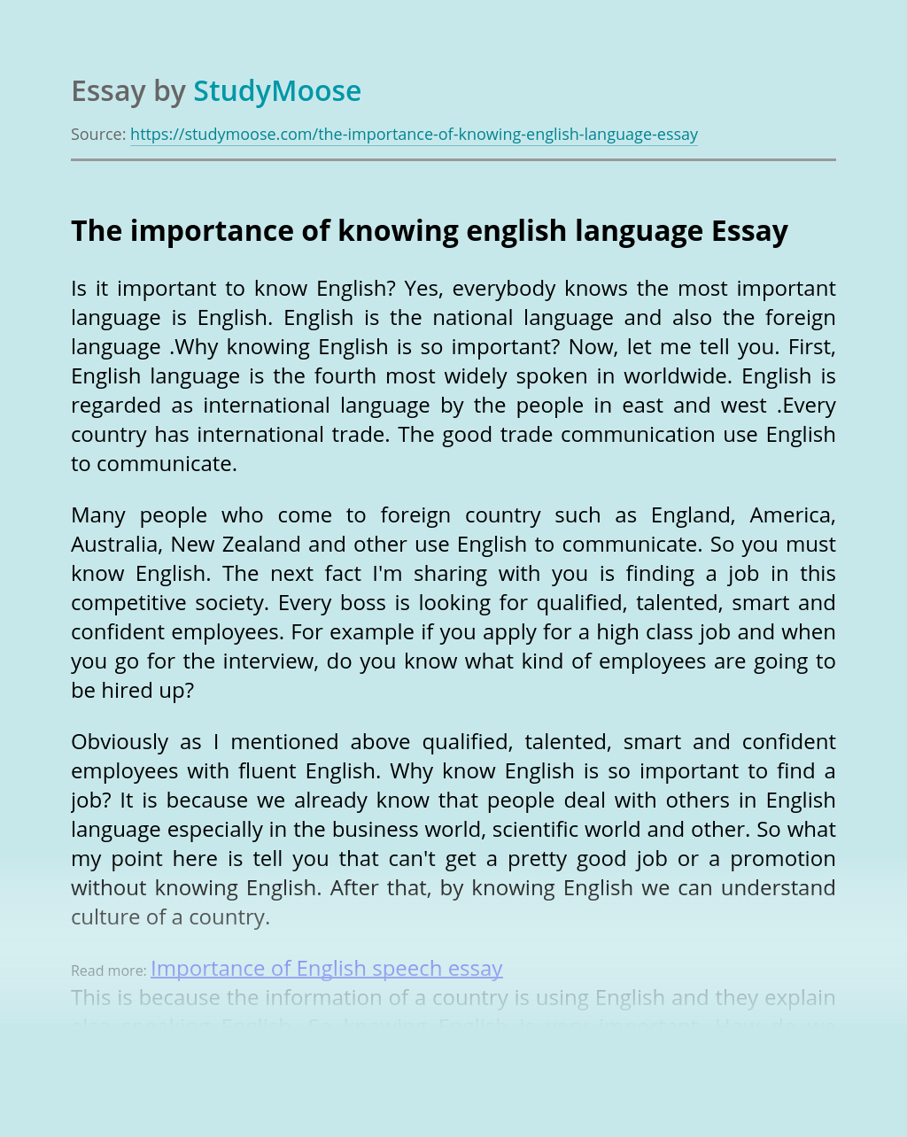 The importance of knowing english language