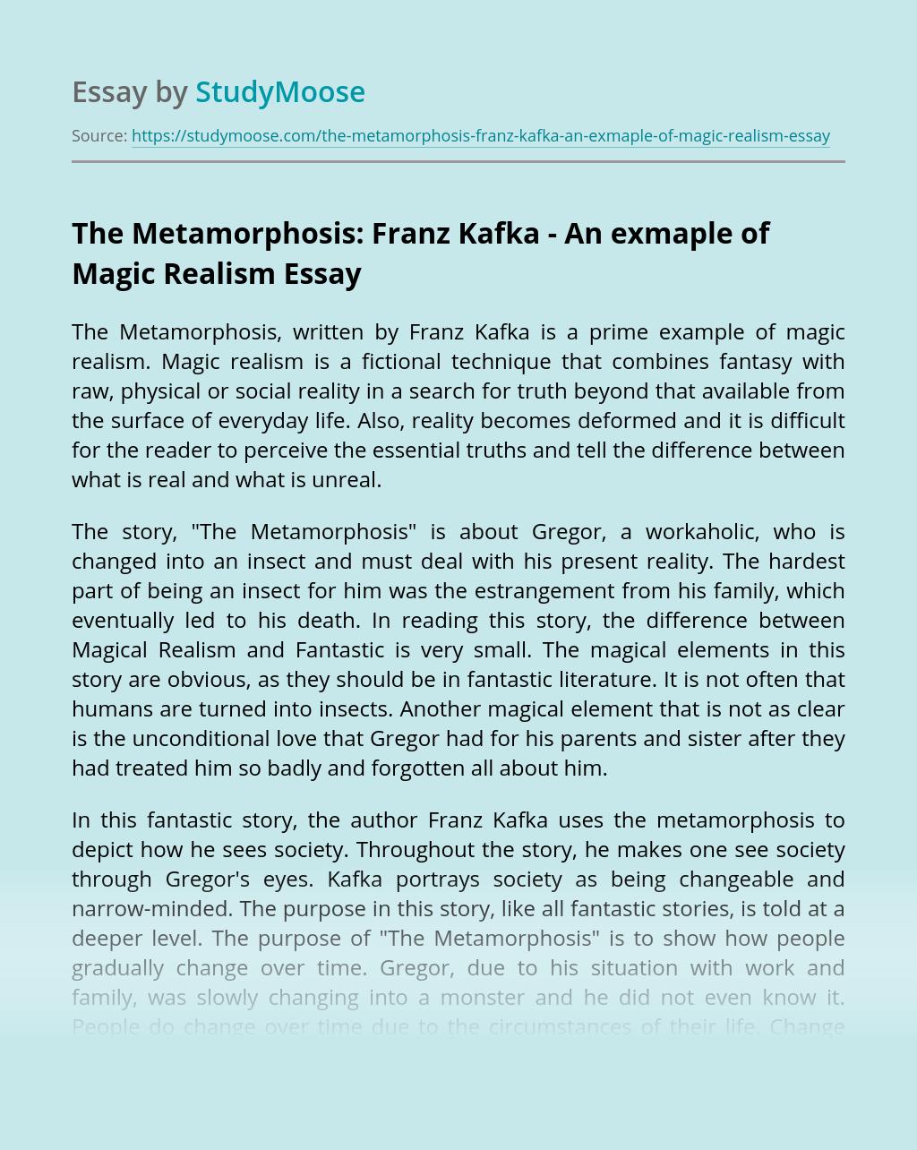The Metamorphosis: Franz Kafka - An exmaple of Magic Realism
