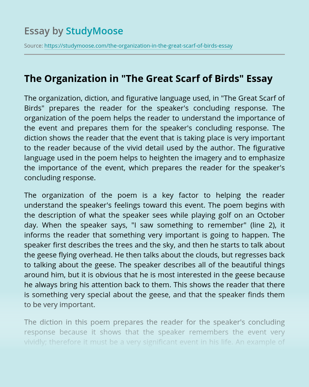 """The Organization in """"The Great Scarf of Birds"""""""