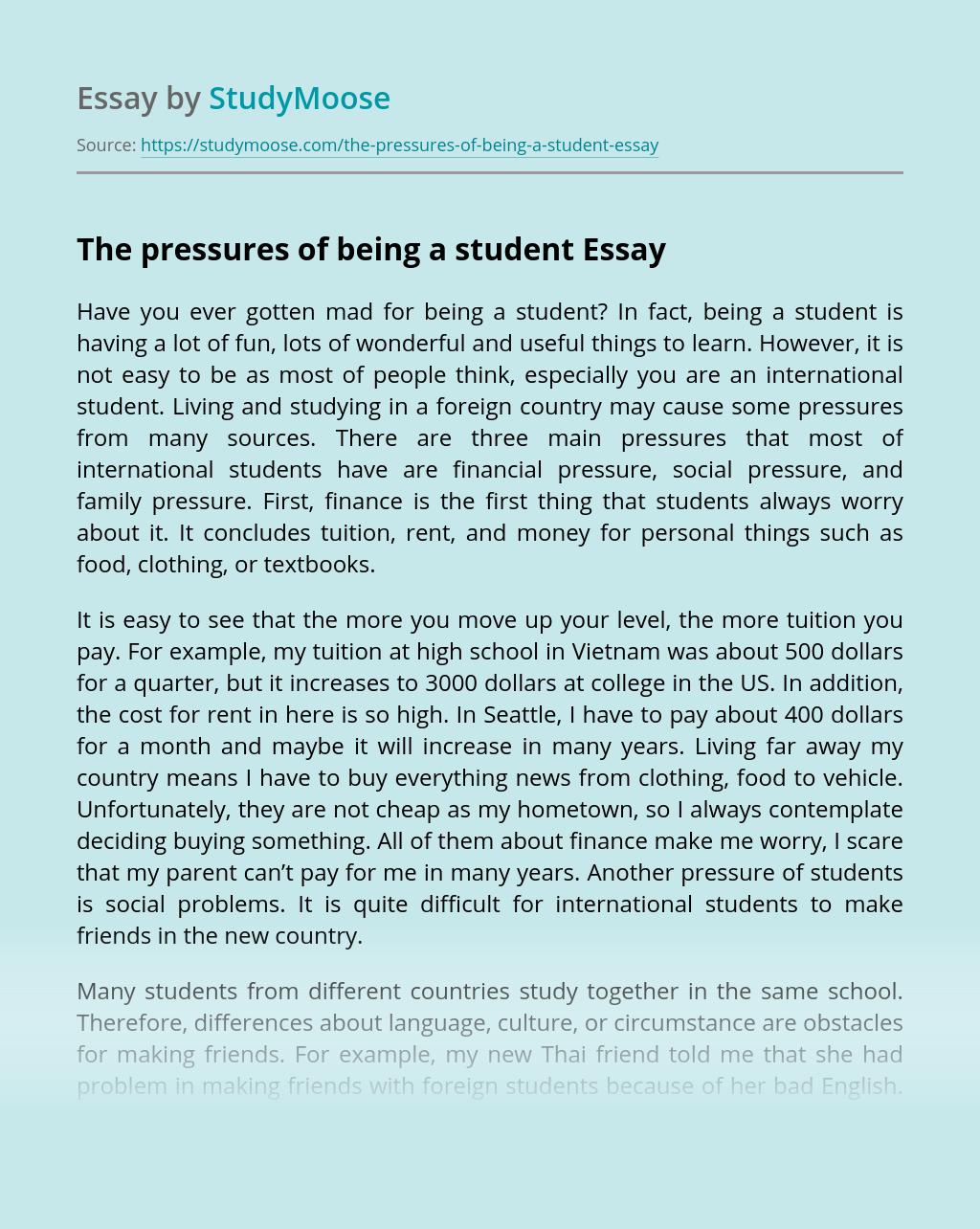 Concluding essay english