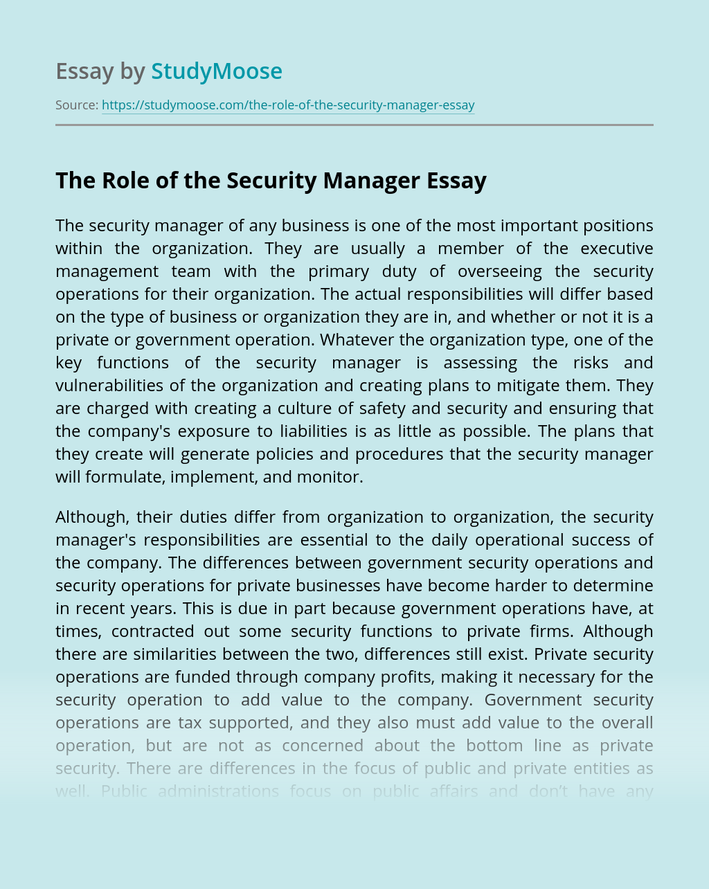 The Role of the Security Manager