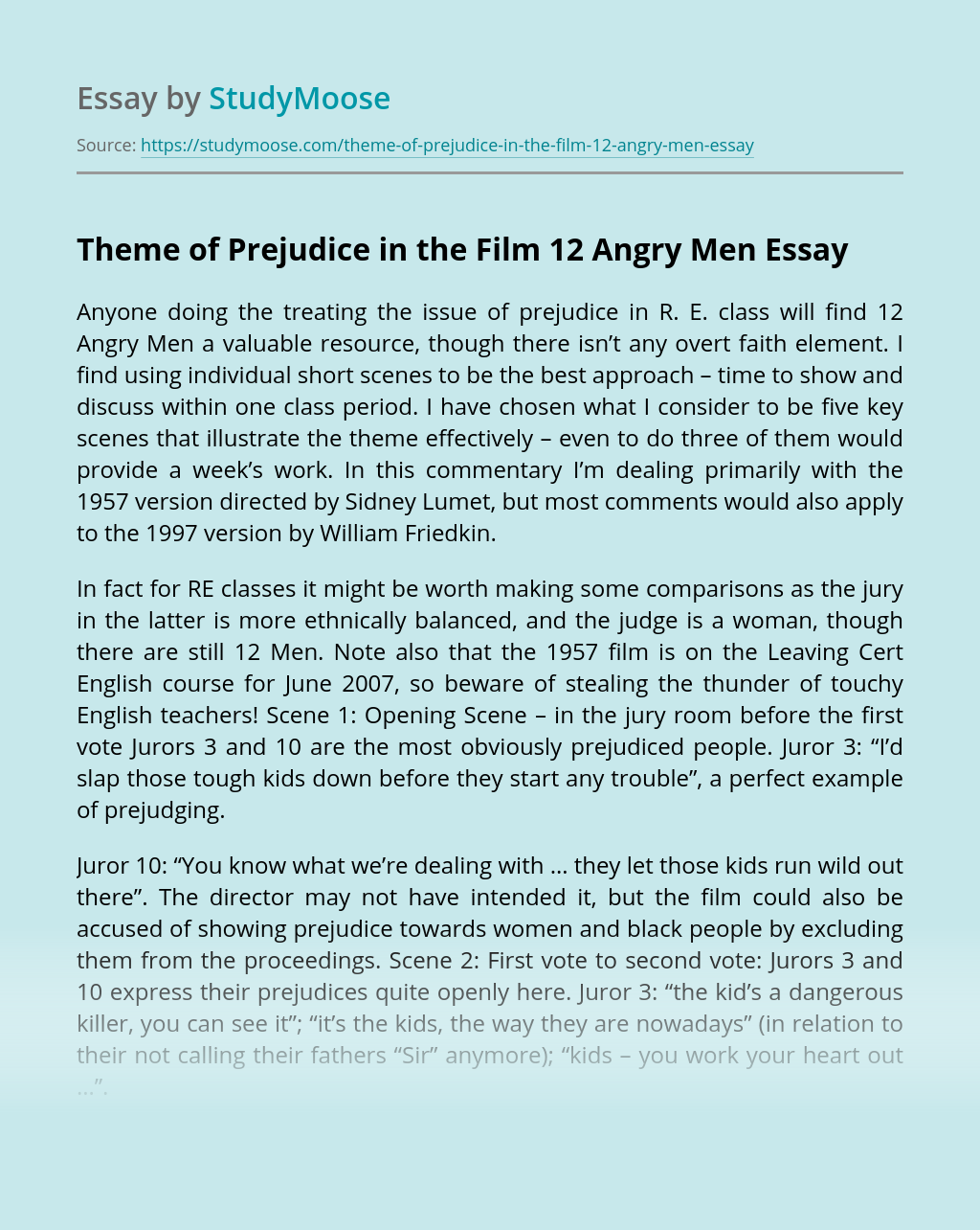 Theme of Prejudice in the Film 12 Angry Men