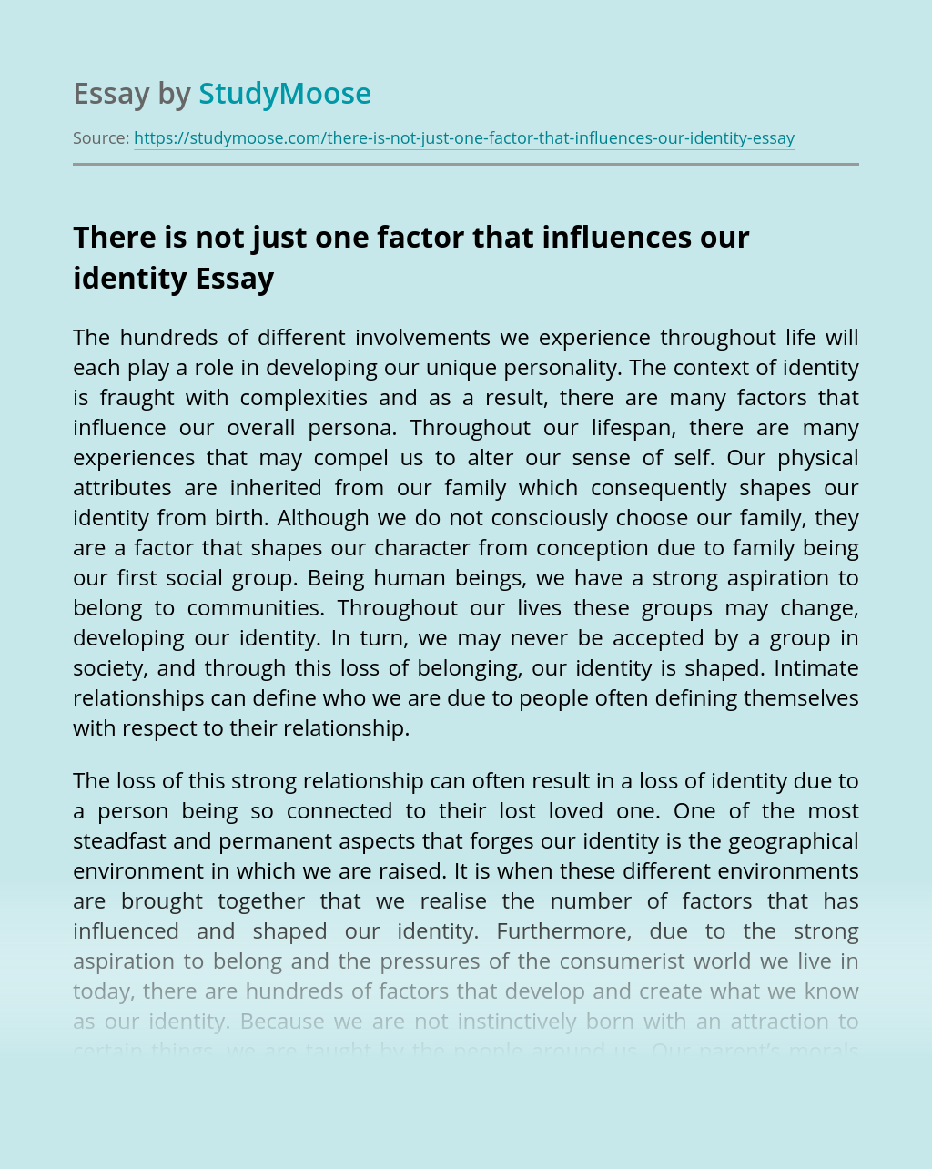 There is not just one factor that influences our identity