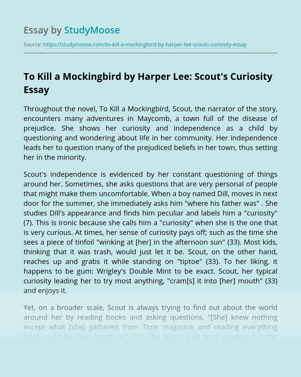 boo radley mockingbird essays
