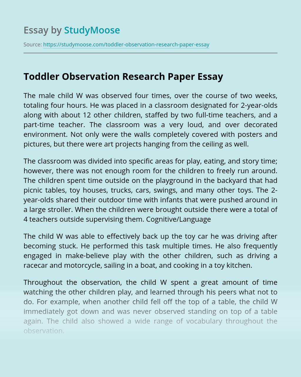 Toddler Observation Research Paper