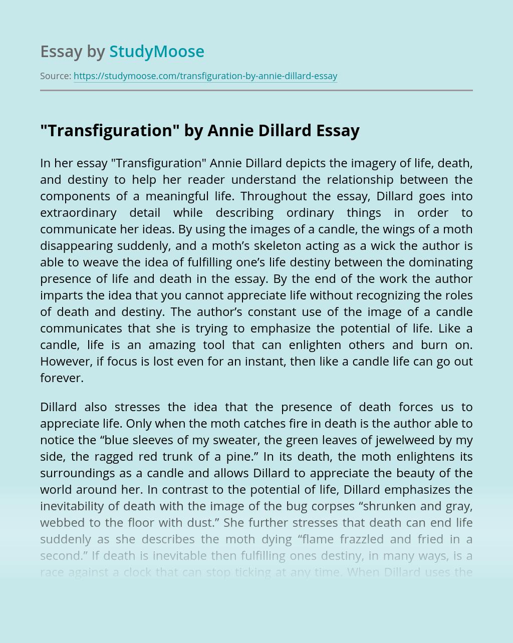 """""""Transfiguration"""" by Annie Dillard"""