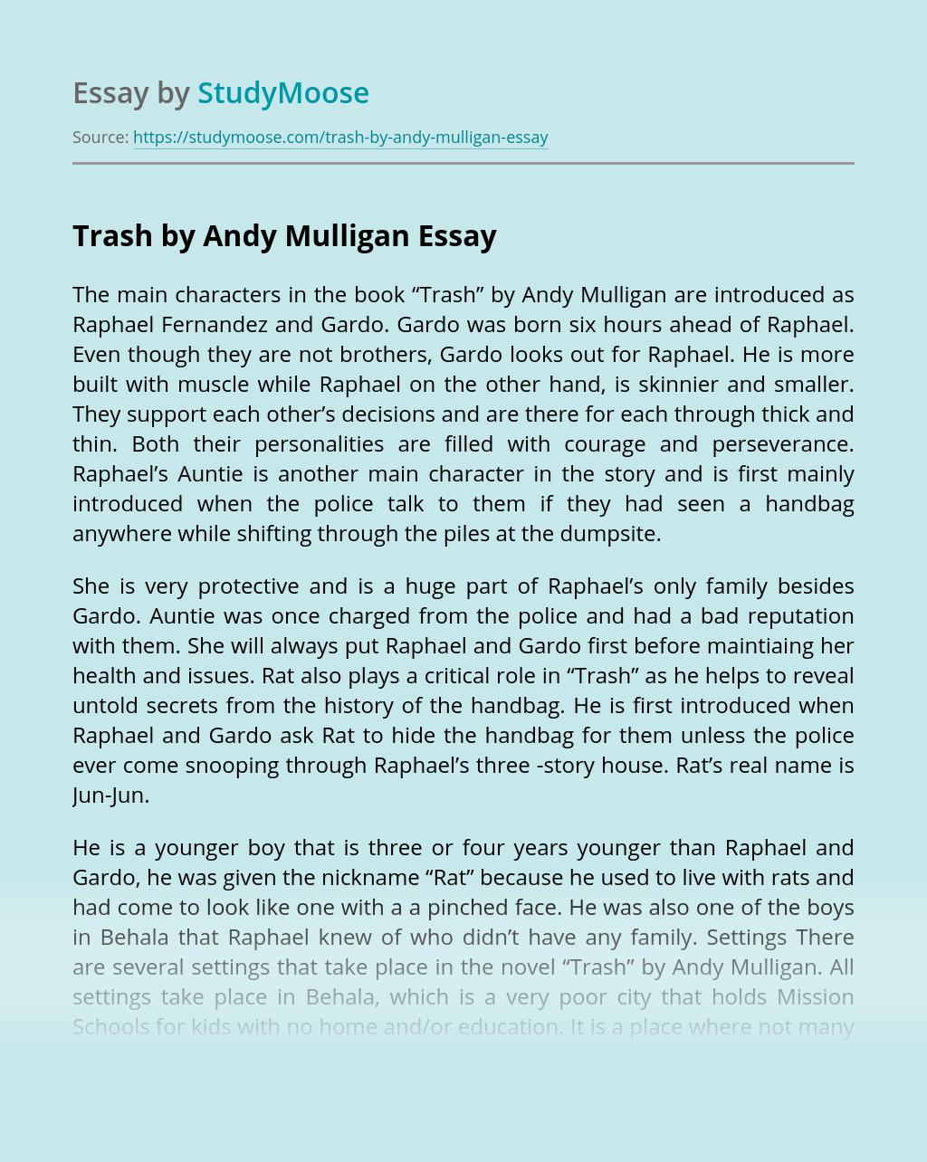 """""""Trash"""" by Andy Mulligan"""