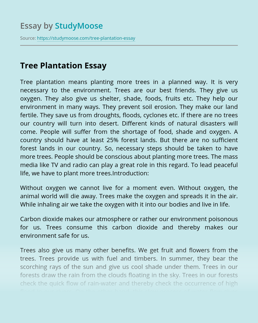 Website that types your essay for you