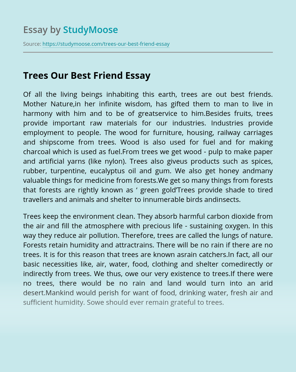 Trees Our Best Friend