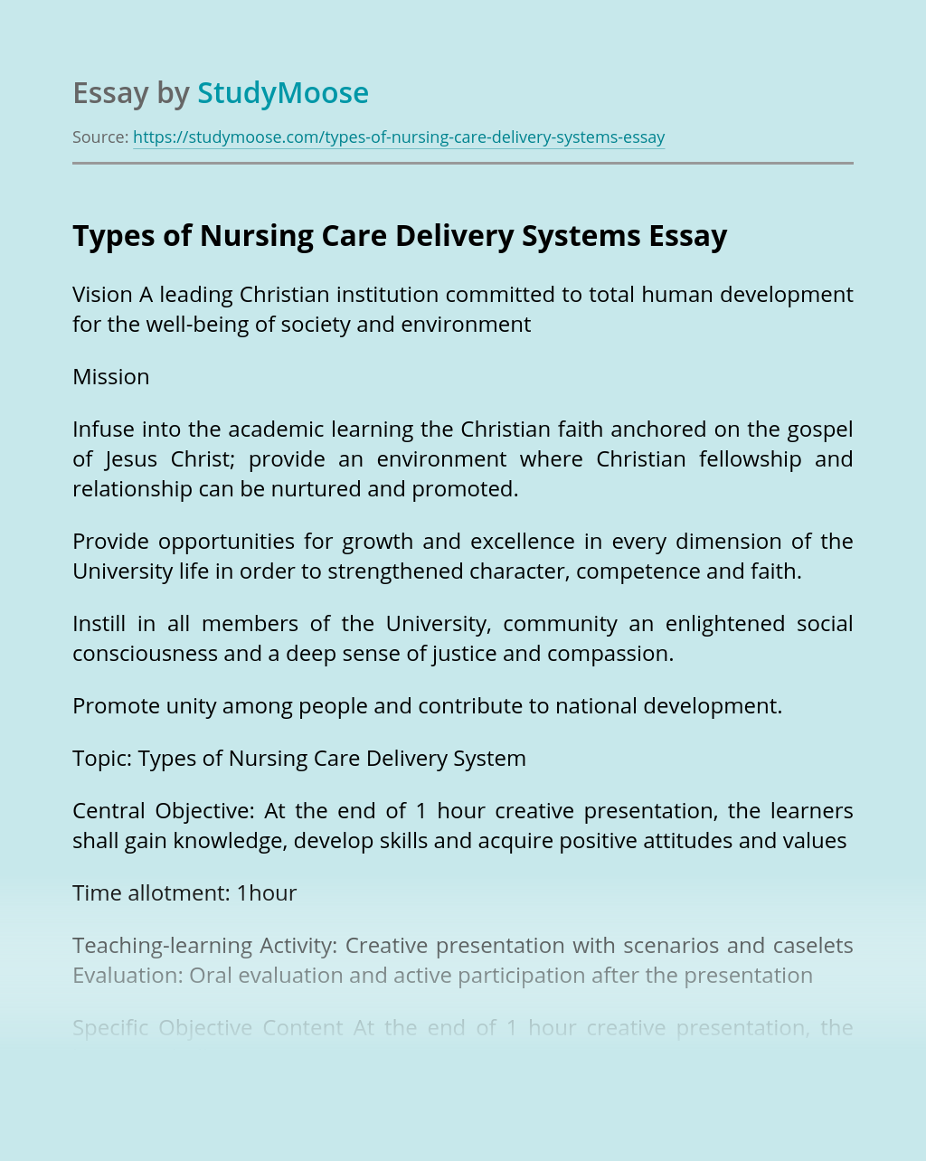 Types of Nursing Care Delivery Systems
