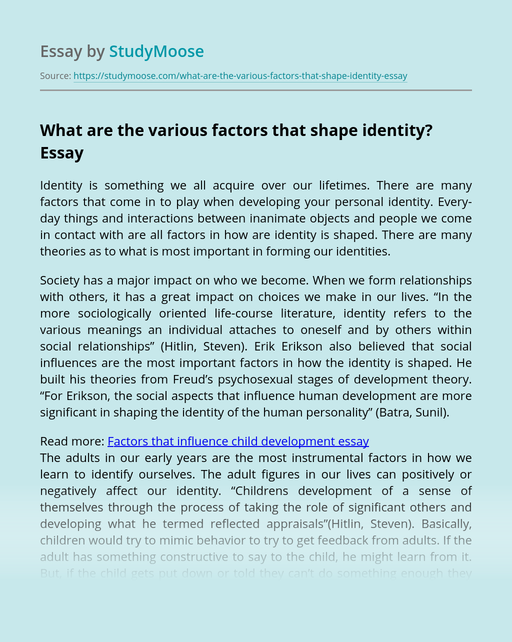 What are the various factors that shape identity?