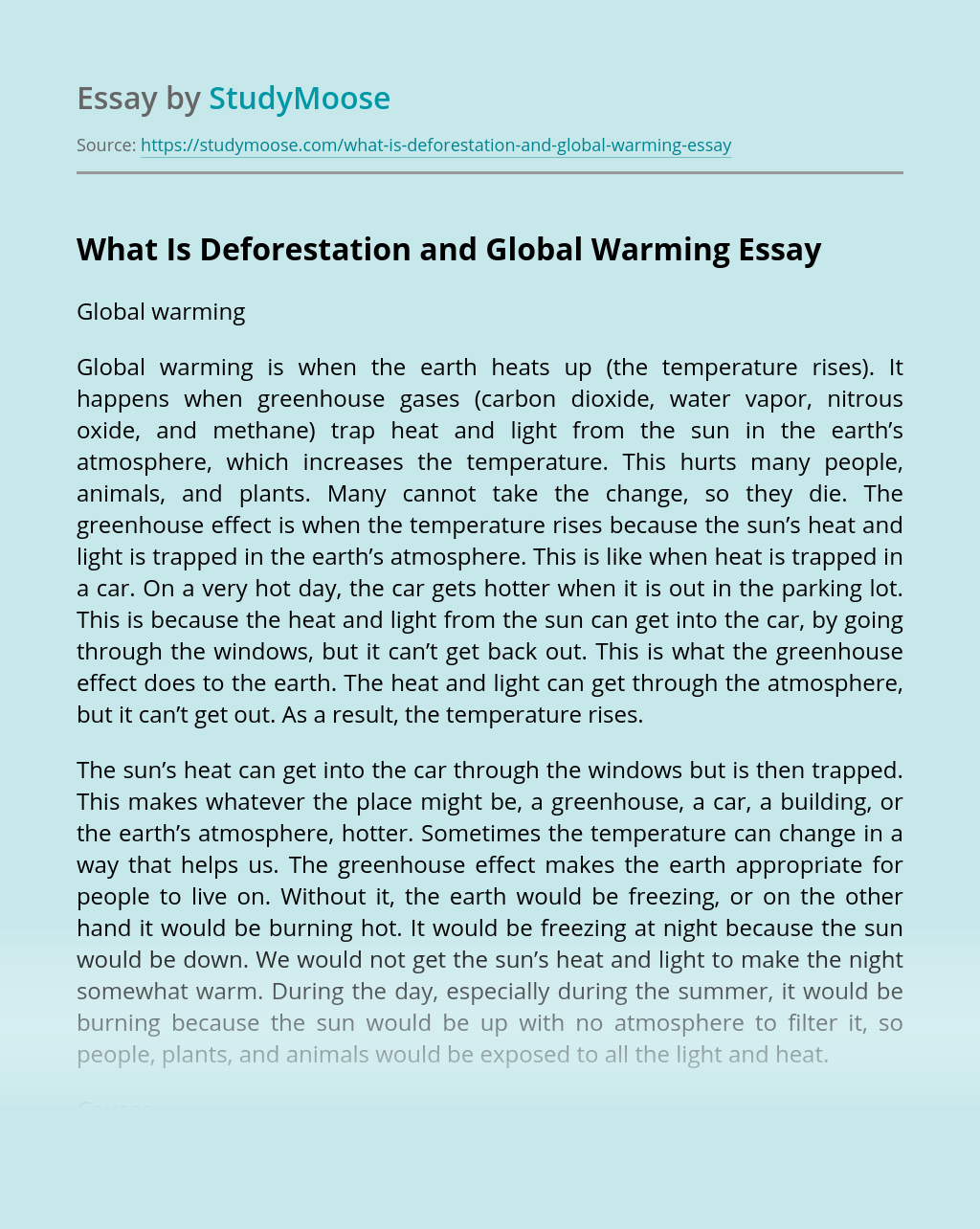 What Is Deforestation and Global Warming