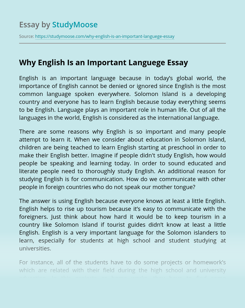 Why English Is an Important Languege