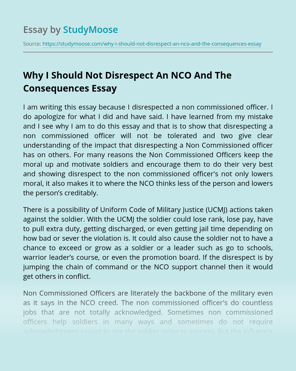 Why I Should Not Disrespect An NCO And The Consequences