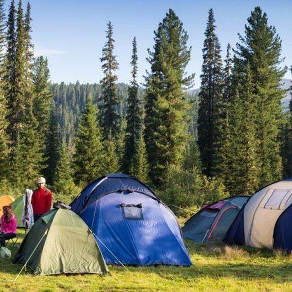 A Camping Trip Essay Examples