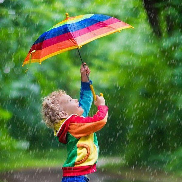 A Rainy Day Essay Examples