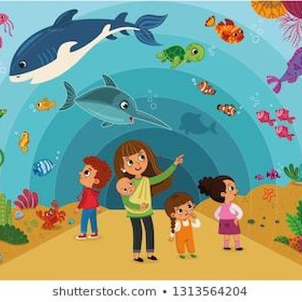 A Visit To An Aquarium Essay Examples