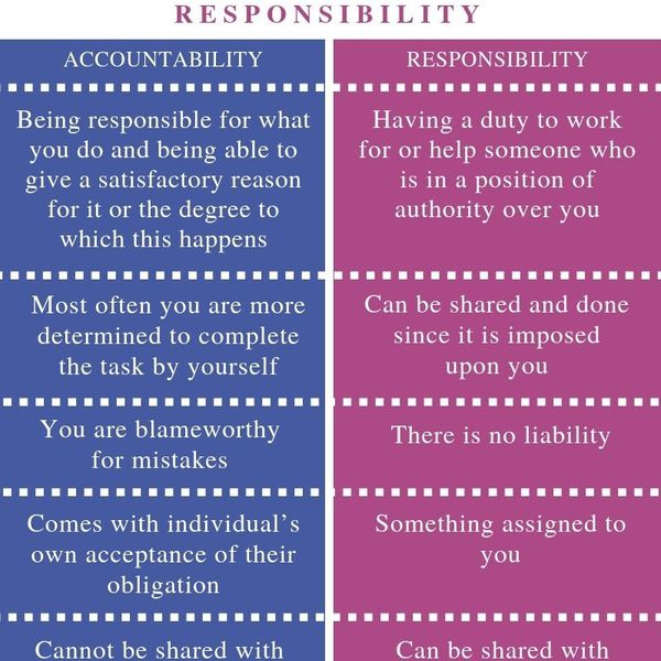 Accountability And Responsibility Essay Examples