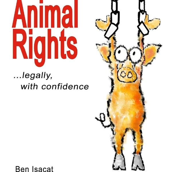 Animal Rights Essay Examples