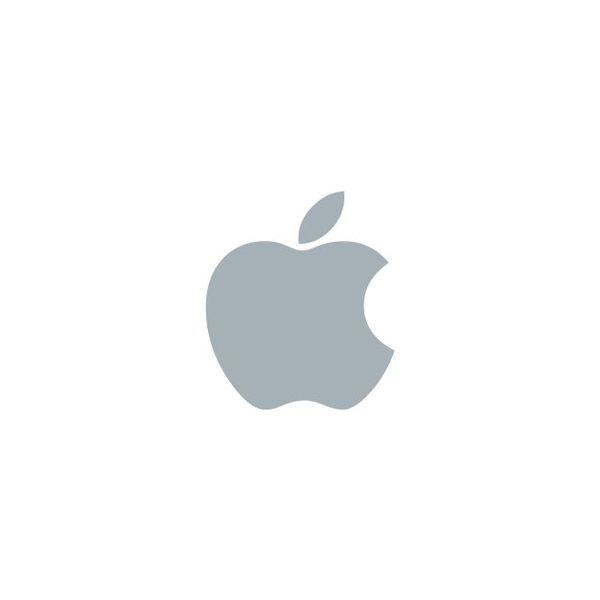 Apple Essay Examples