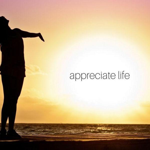 Appreciation Of Life Essay Examples