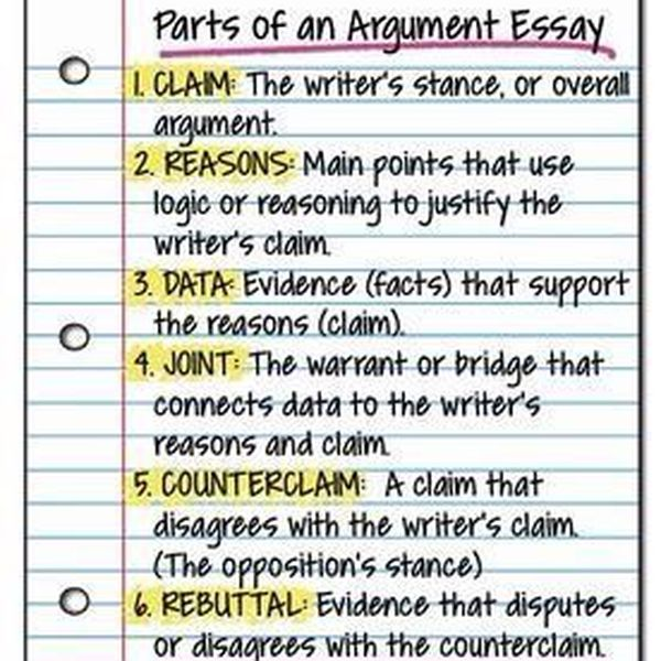 Argumentative Writing Essay Examples