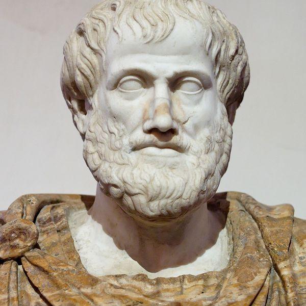 Aristotle Essay Examples