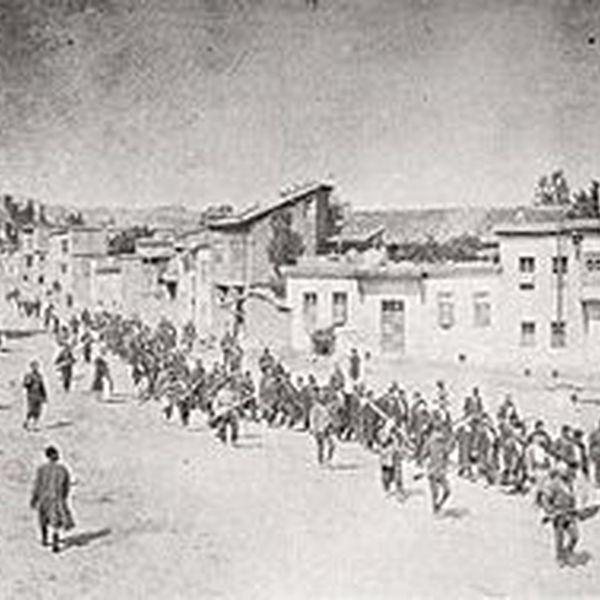 Armenian Genocide Essay Examples