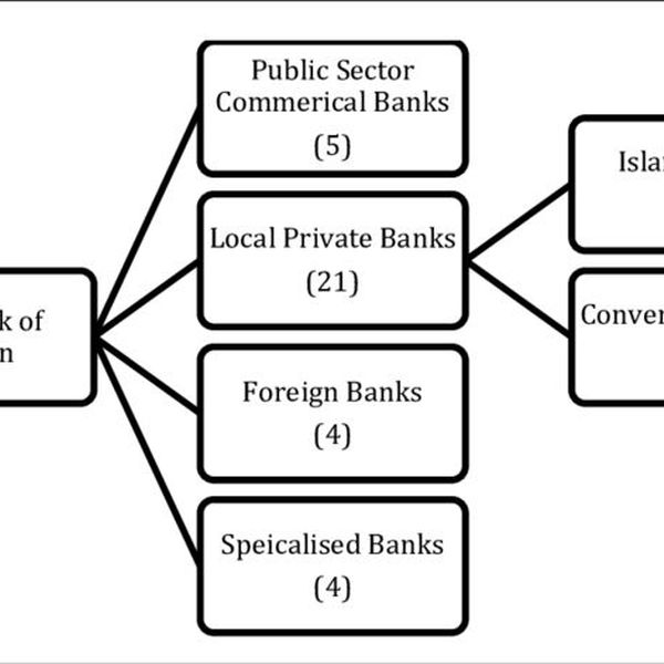 Banking System In Pakistan Essay Examples