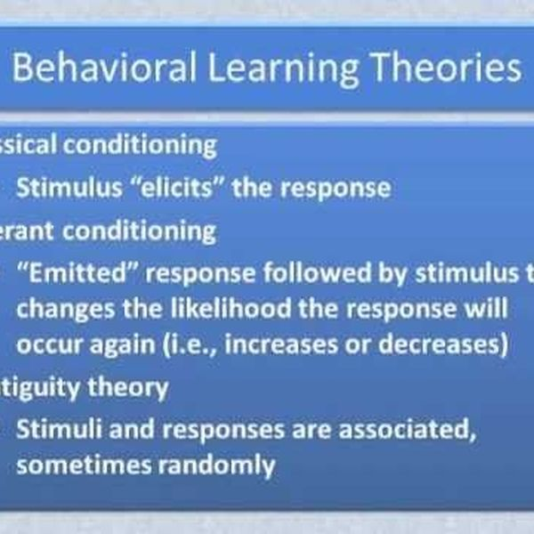Behavioral Theory Essay Examples