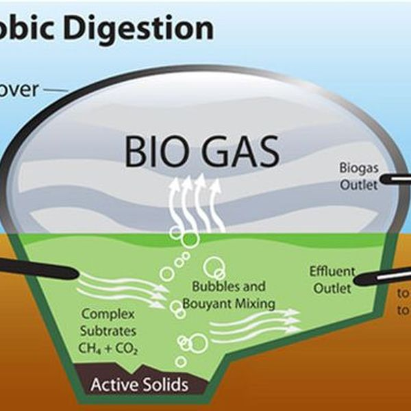 Biogas And Gobar Gas Energy Essay Examples