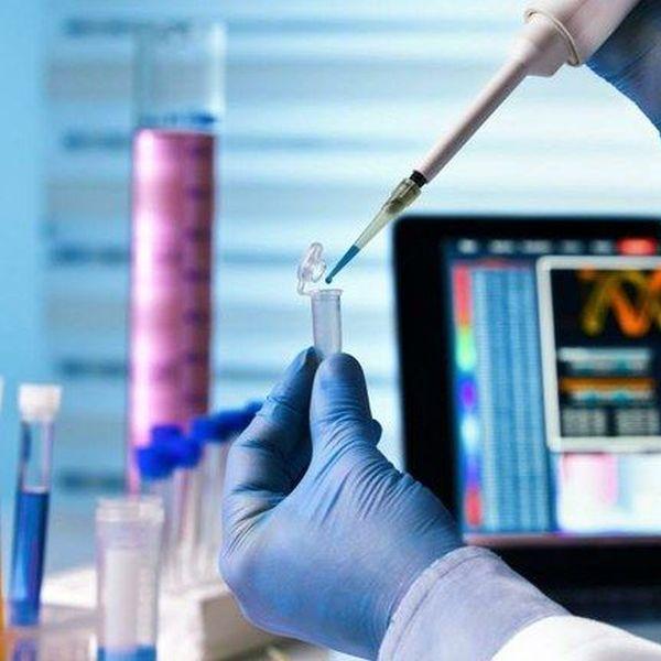 Biomedicine Essay Examples