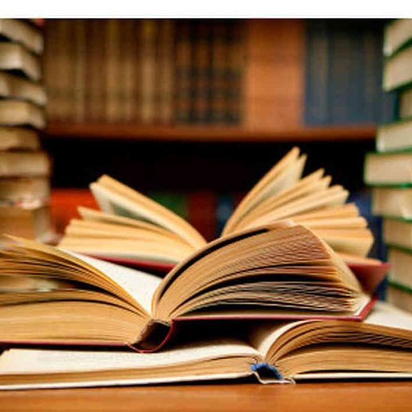 Books And Reading Essay Examples