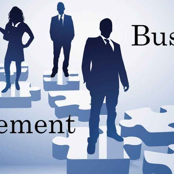 Business Management Essay Examples