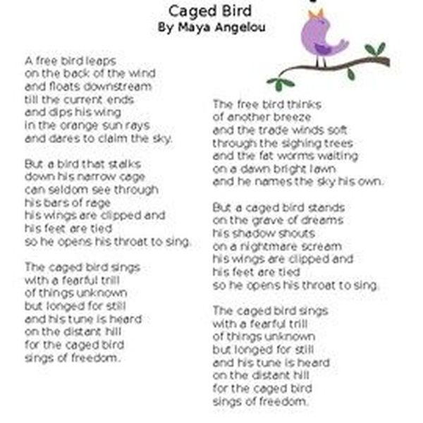 Caged Bird By Maya Angelou Essay Examples