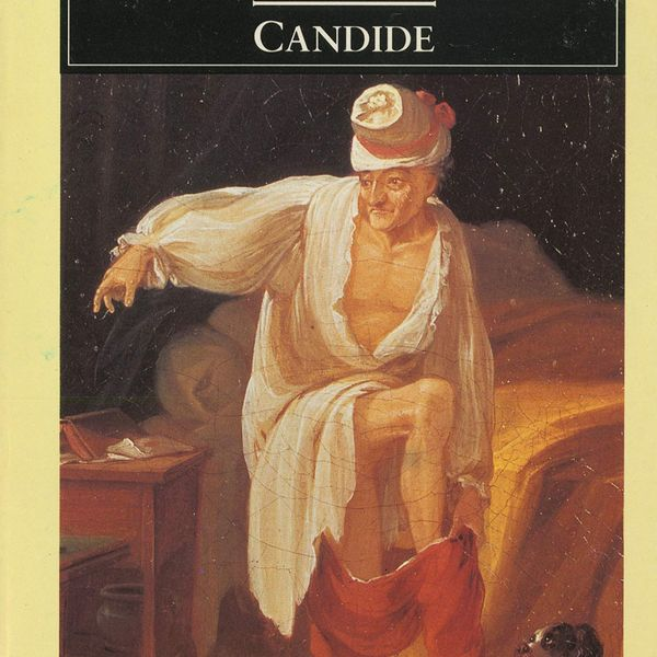 Candide Essay Examples