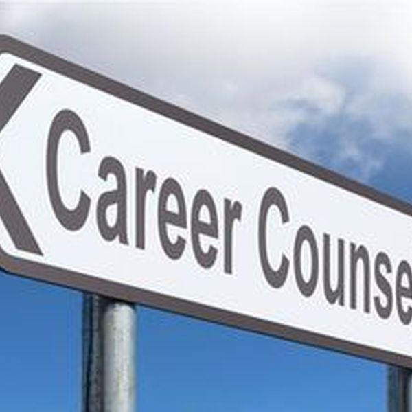 Career Counseling Essay Examples
