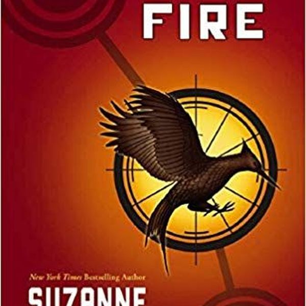 Catching Fire Essay Examples