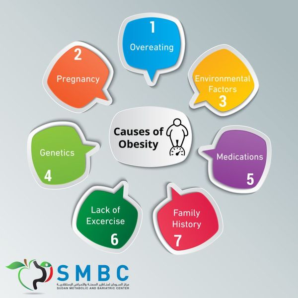 Causes Of Obesity Essay Examples
