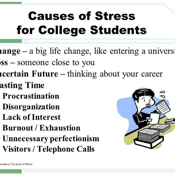 Causes Of Stress Among Students Essay Examples