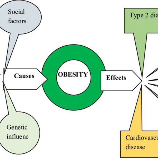 Childhood Obesity Cause And Effect Essay Examples