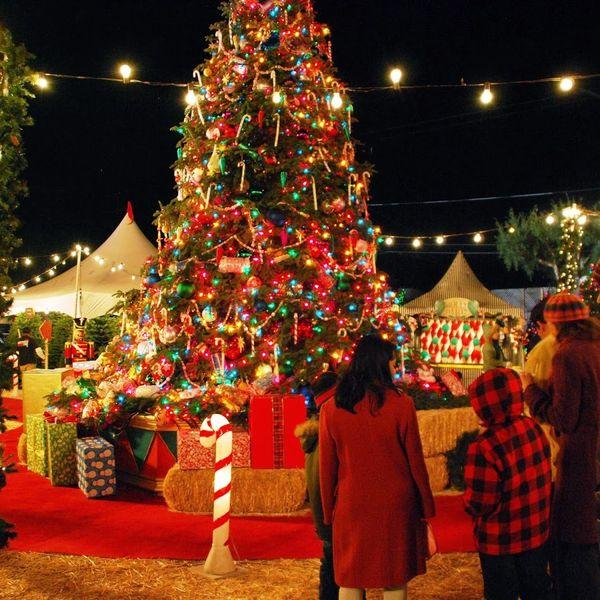 Christmas Celebration Essay Examples