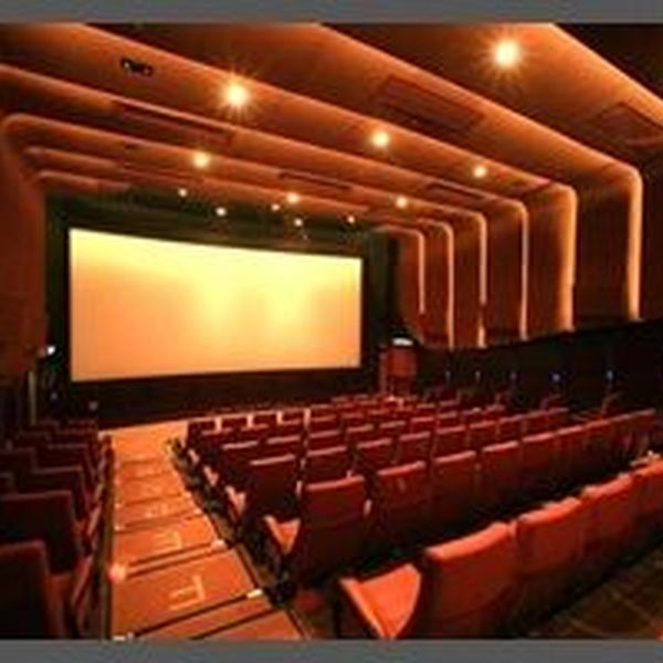 Cinema Both Entertains And Educates Essay Examples