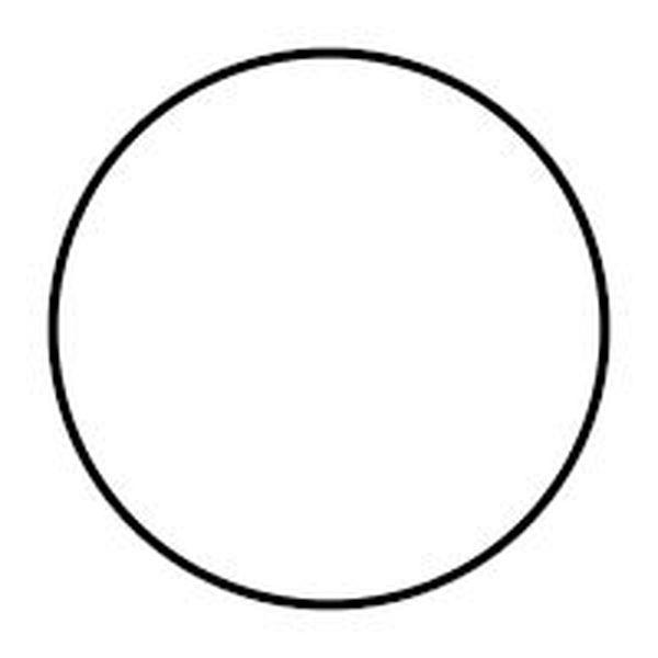 Circle Essay Examples